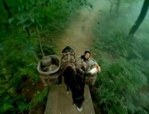 A man is riding a donkey cart through a forest