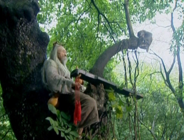 An old man plays music while sitting on a tree branch.