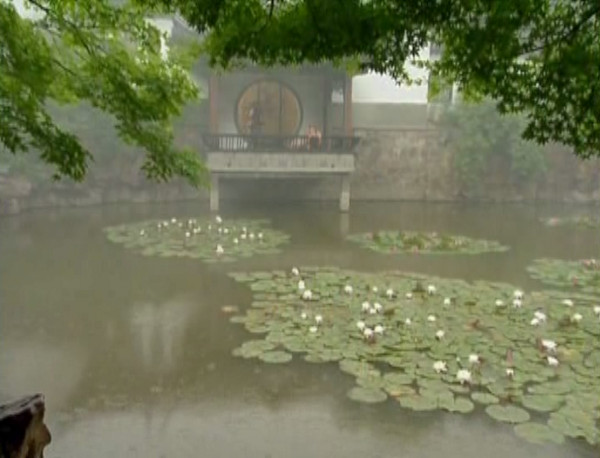 A traditional Chinese lotus pond