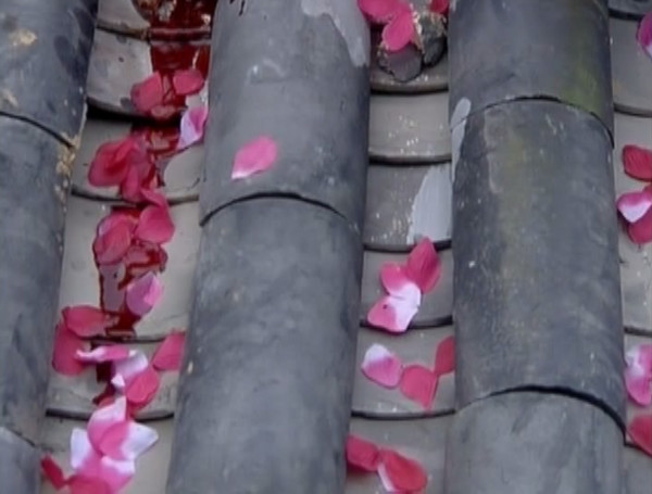 Blood mixes with flower petals as the lovers die (I'm not saying *which* lovers die, so this is not a spoiler)