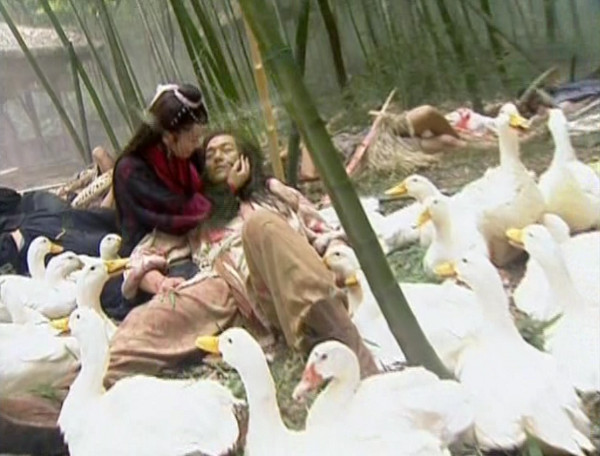 Ren Yingying bent over an injured Linghu Chong among a flock of ducks in a bamboo forest.
